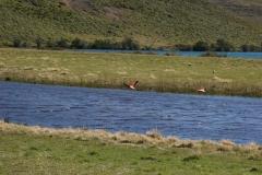 19 Laguna Azul 22.11.2007 22-06-10